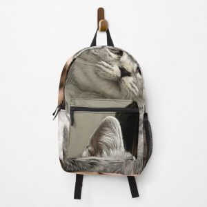 GeorgeNotFound with his cat Backpack RB0906 product Offical GeorgeNotFound Merch